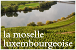 Moselle luxembourgeoise